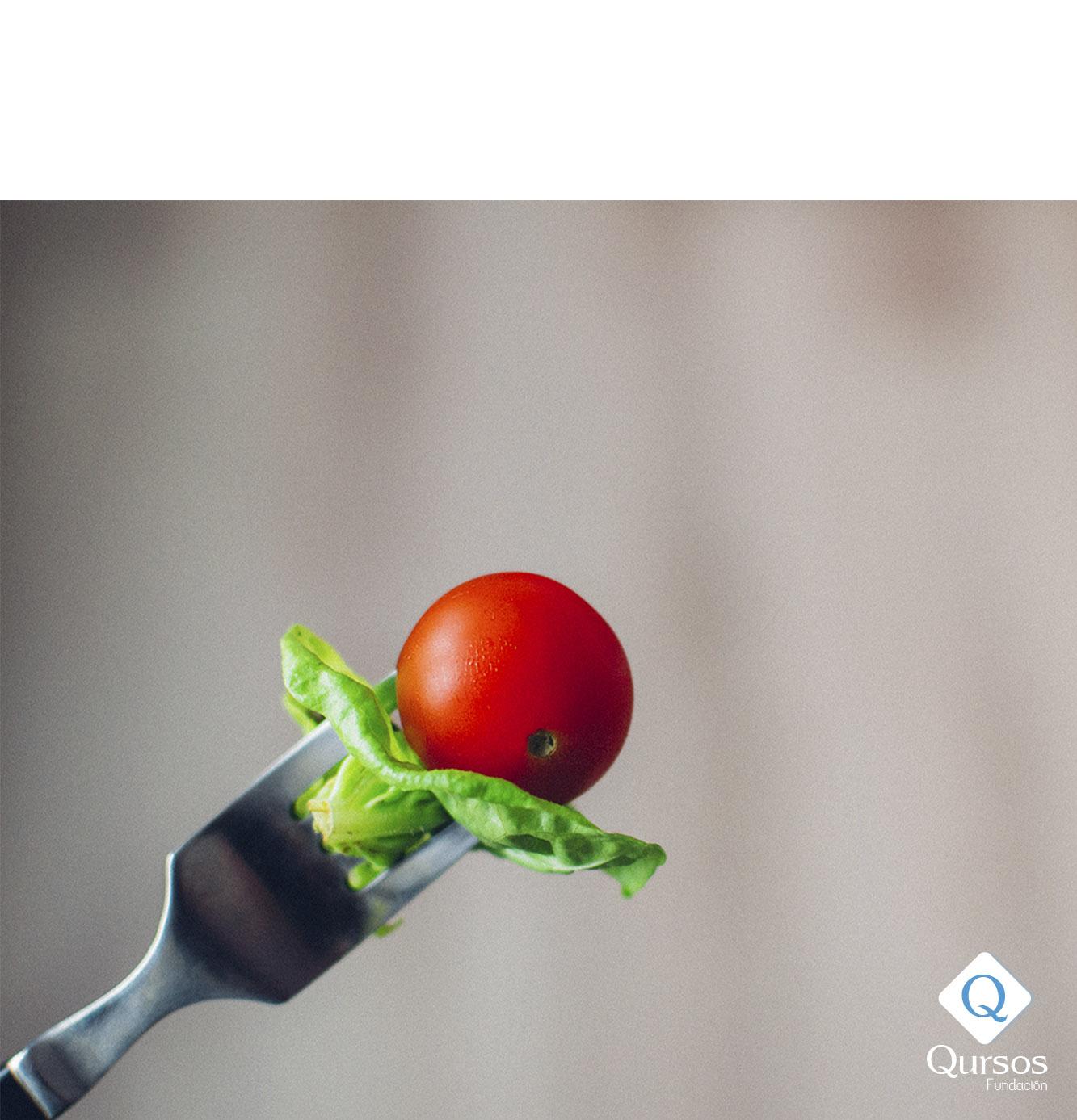 Actuación del profesional en programas de trastorno de la conducta alimentaria
